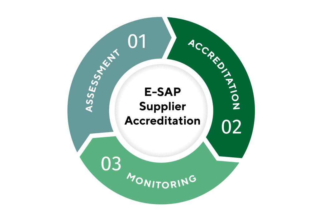 E SAP Supplier accreditation infographic 01